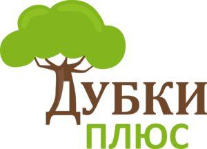 Логотип вариант 3